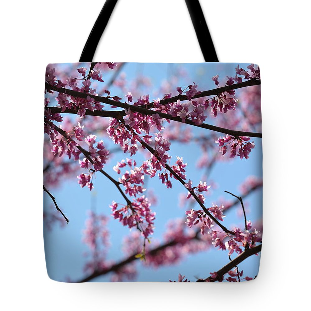 On A Spring Morning Tote Bag featuring the photograph On A Spring Morning by Maria Urso