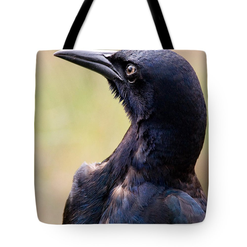 Bird Tote Bag featuring the photograph On Alert by Christopher Holmes