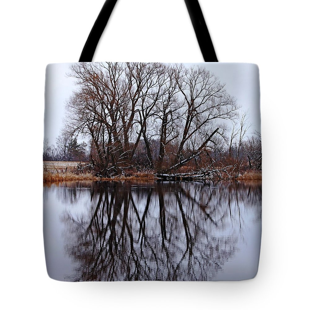 Spring Tote Bag featuring the photograph On The Verge Of Spring by Debbie Oppermann