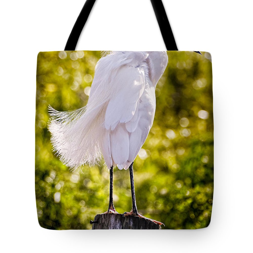 snowy Egret Tote Bag featuring the photograph On Watch by Christopher Holmes