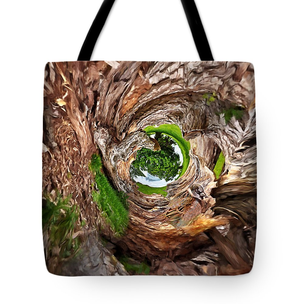 Tree Tote Bag featuring the photograph Once A Tree by Pennie McCracken