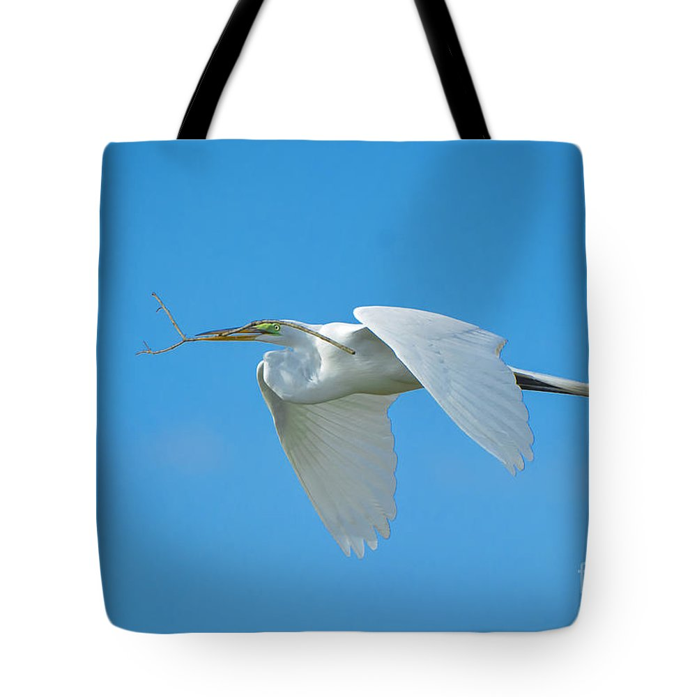 Great Tote Bag featuring the photograph One By One by Quinn Sedam