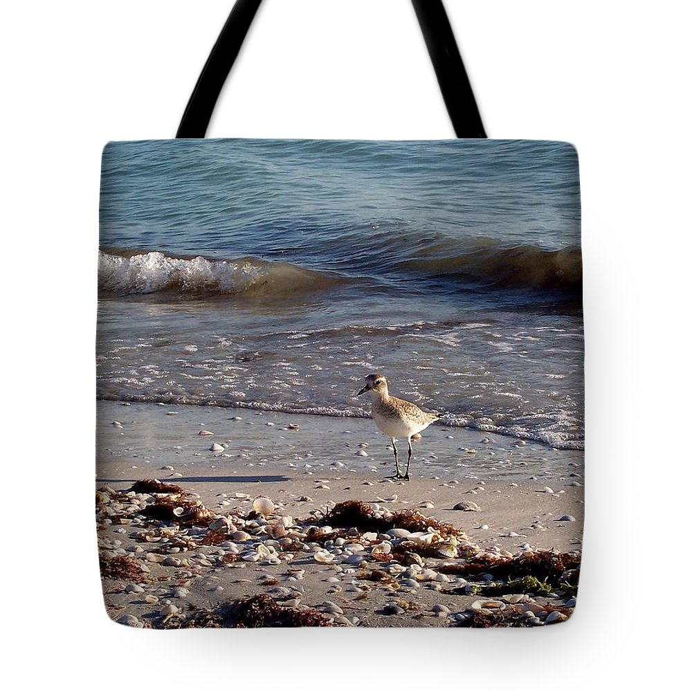 Bird Tote Bag featuring the photograph One December Evening by Elizabeth Klecker