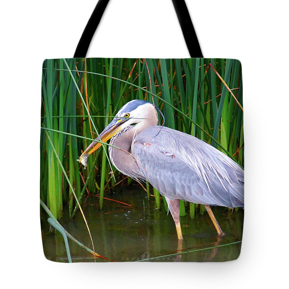 Tote Bag featuring the photograph One Last Gulp by Tony Umana