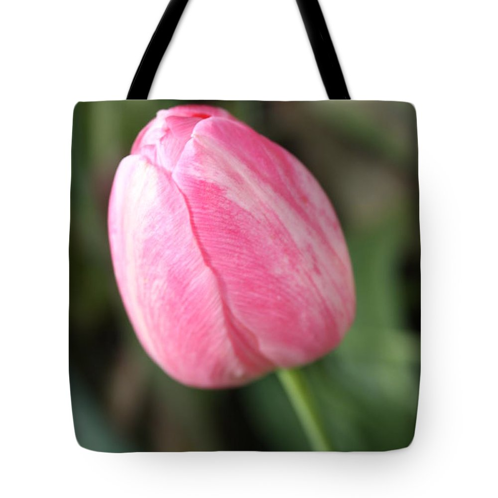 Pink Tulip Tote Bag featuring the photograph One Lovely Pink Tulip by Carol Groenen