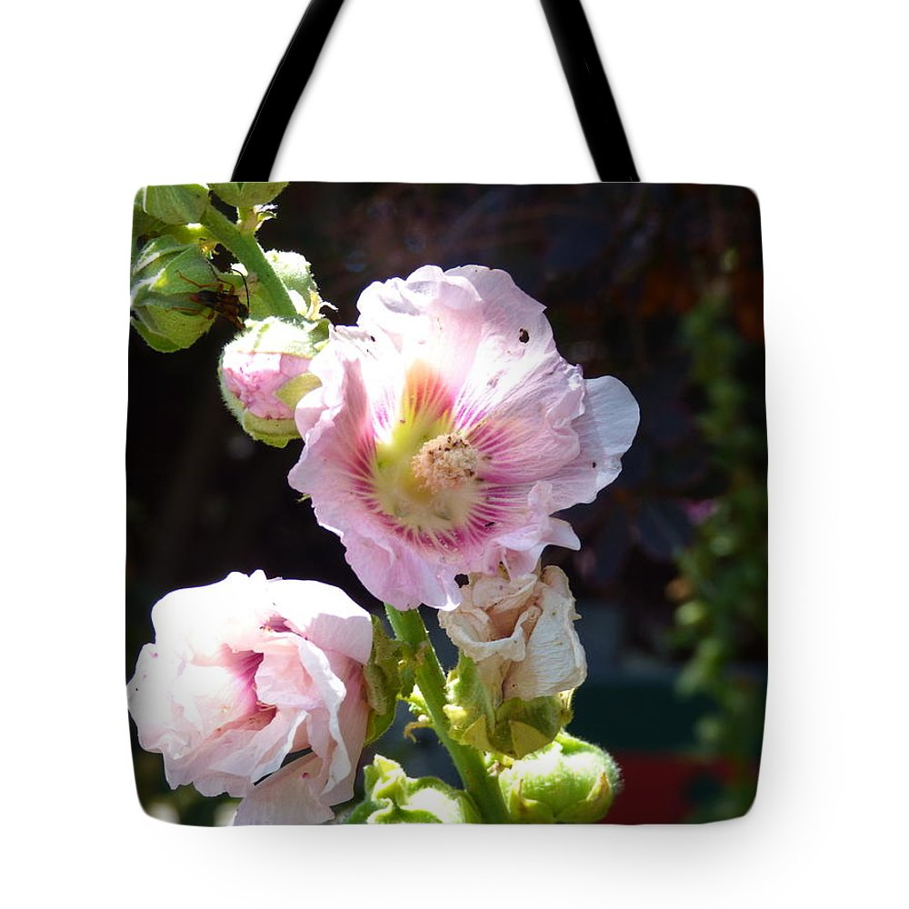 Paul Stanner Tote Bag featuring the photograph One Moment More by Paul Stanner
