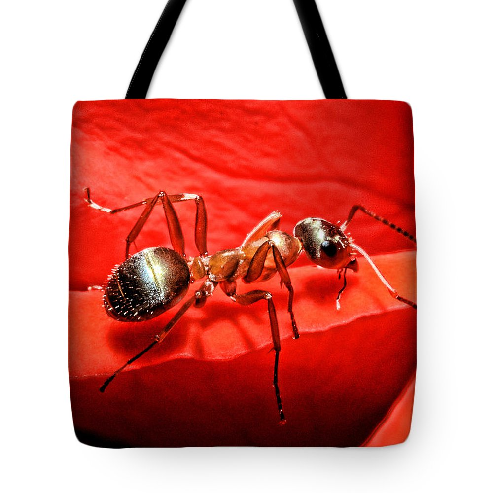 Ant Tote Bags