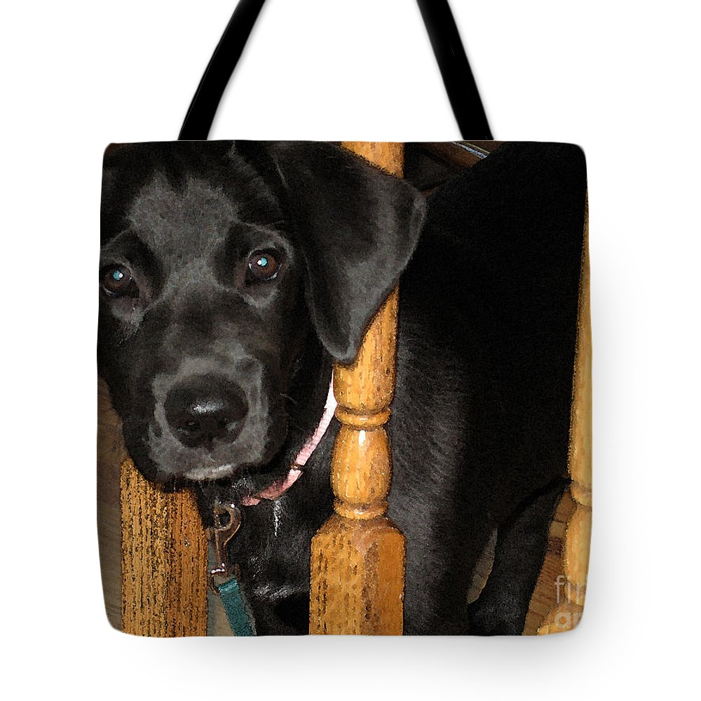 Dog Tote Bag featuring the photograph One Way Only by Rhonda Chase