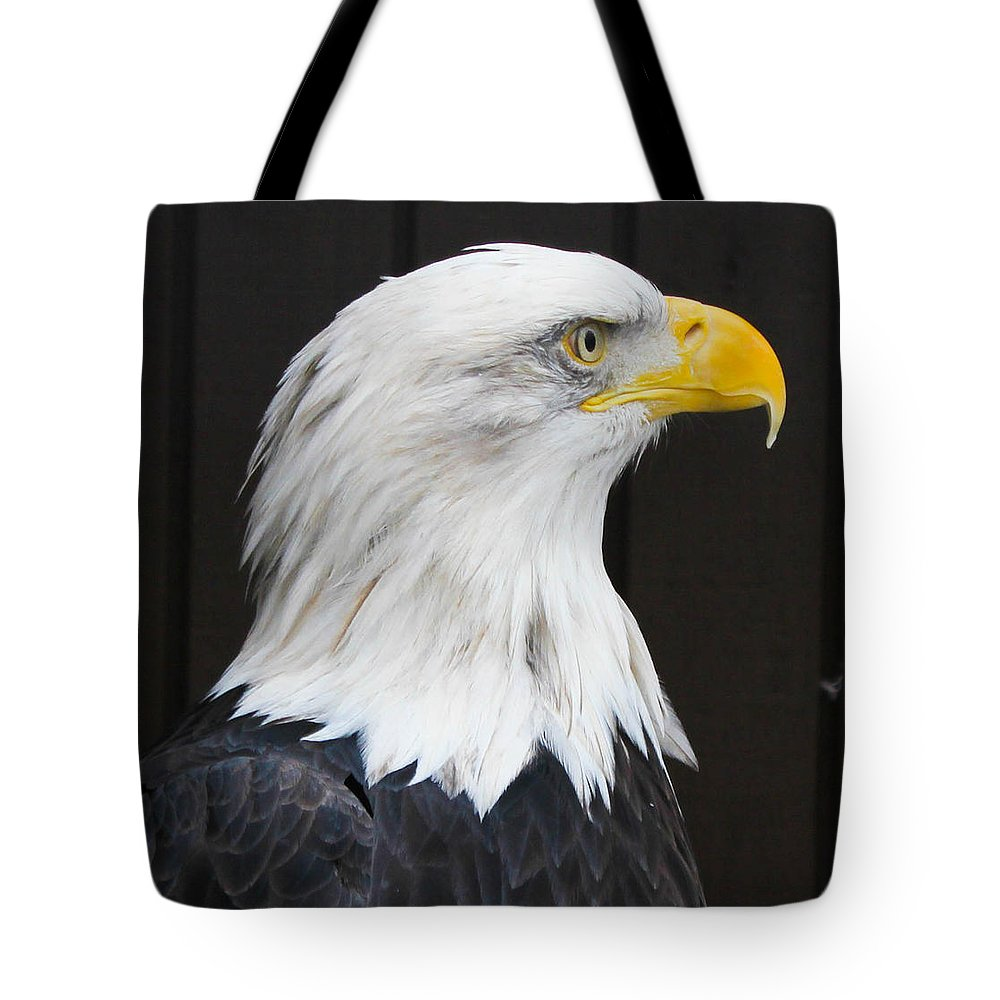 Bald Eagle Tote Bag featuring the photograph One Wing Short by Sheryl Mayhew
