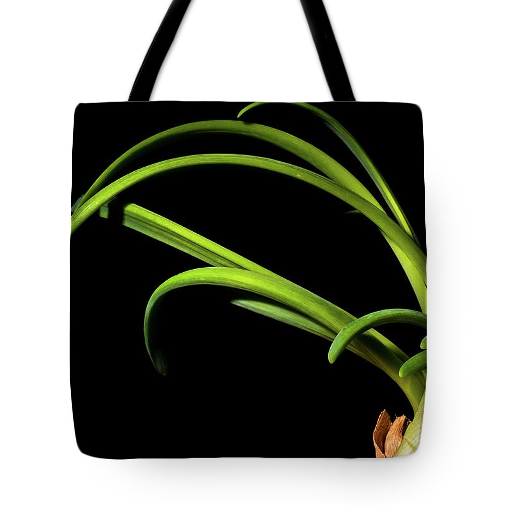 Onion Greens Tote Bag featuring the photograph Onion Greens by Onyonet Photo Studios
