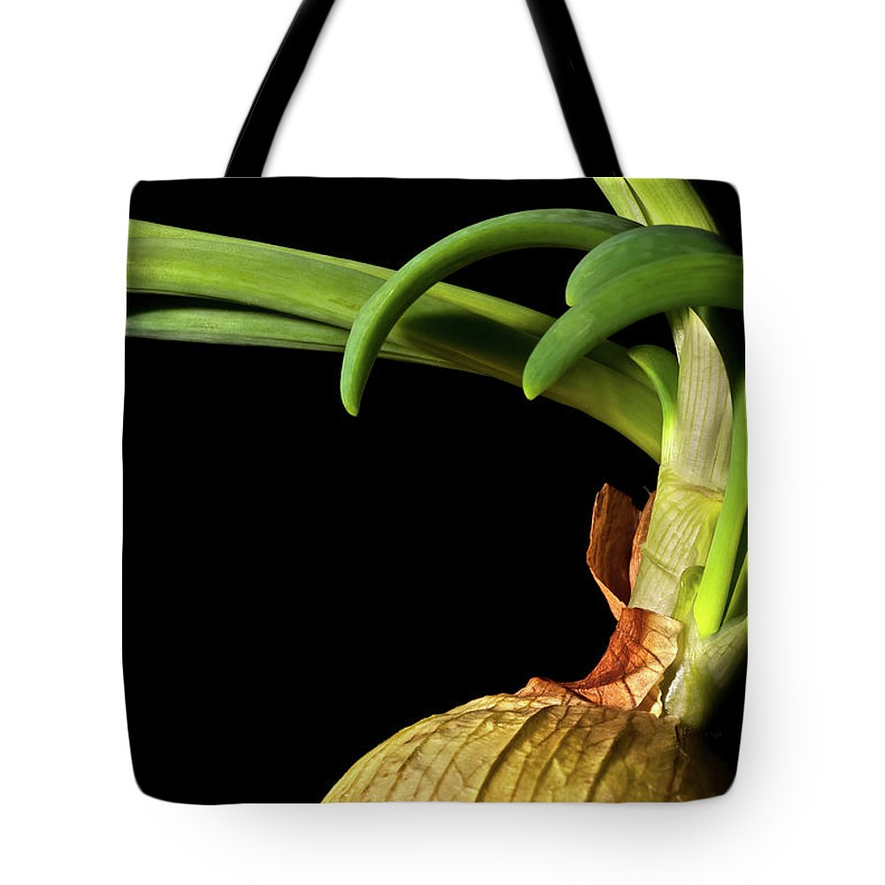 Onion Greens Tote Bag featuring the photograph Onion Sprouting by Onyonet Photo Studios