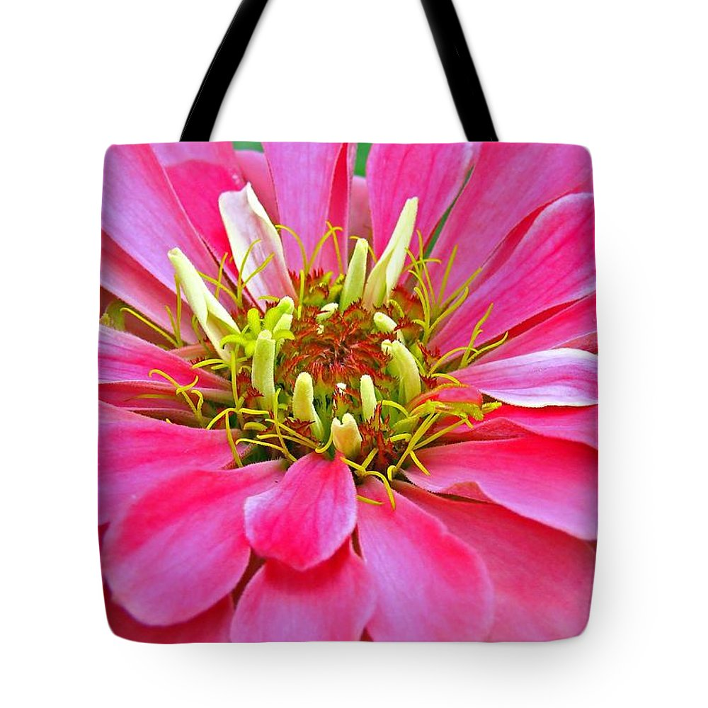 Landscape Tote Bag featuring the photograph Only The Beginning by Mary Halpin
