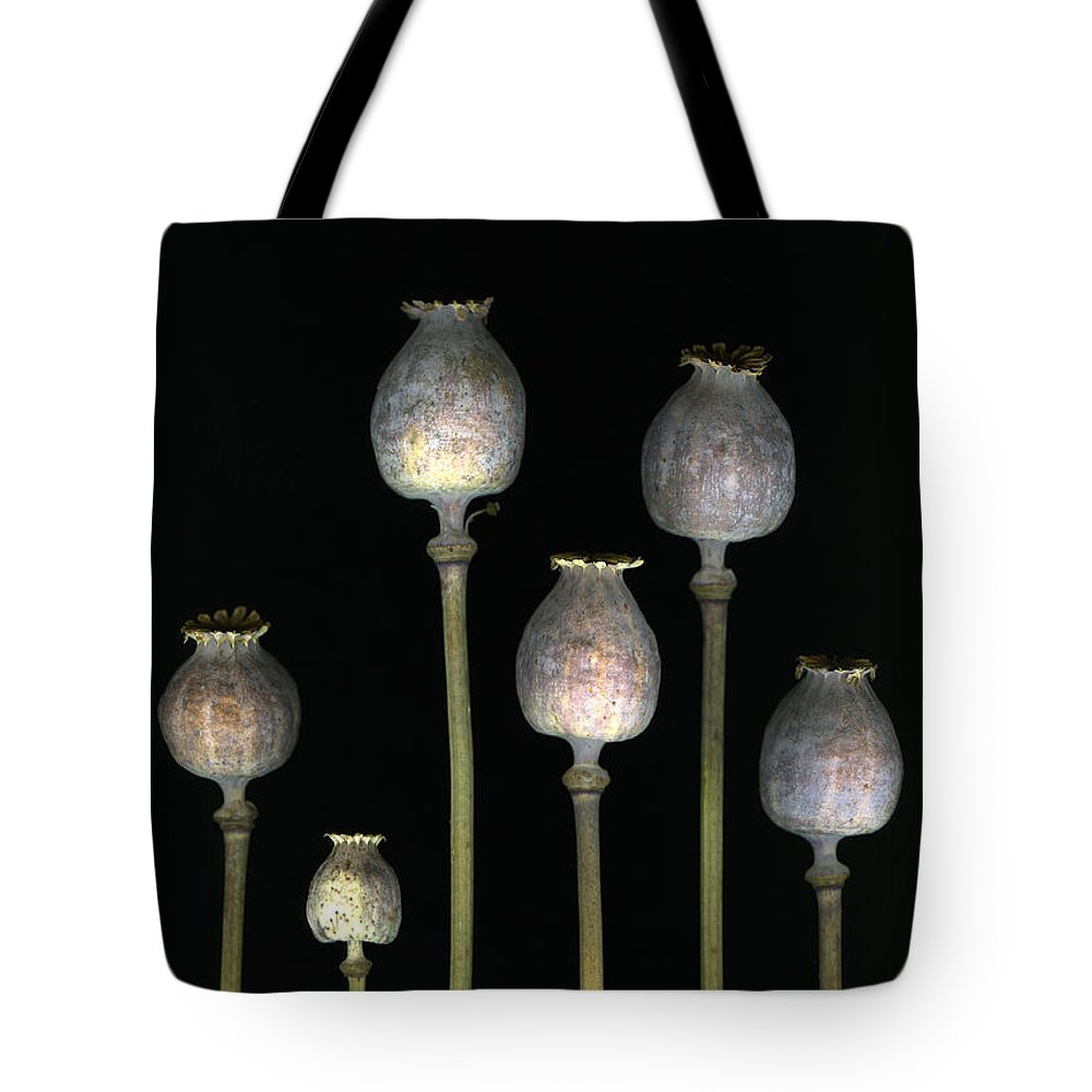 Scanography Tote Bag featuring the photograph Opiates by Christian Slanec