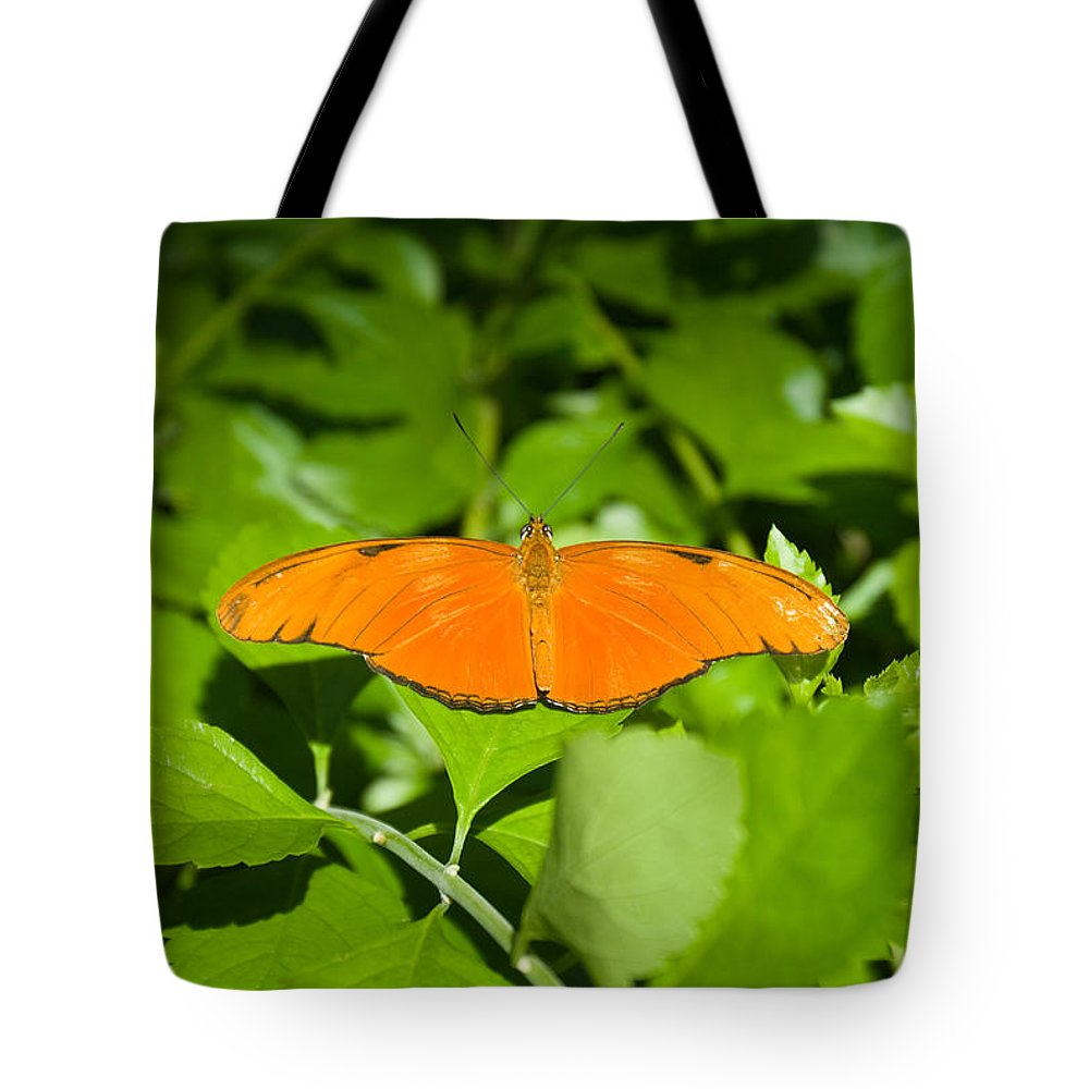 Orange Tote Bag featuring the photograph Orange Butterfly by Douglas Barnett
