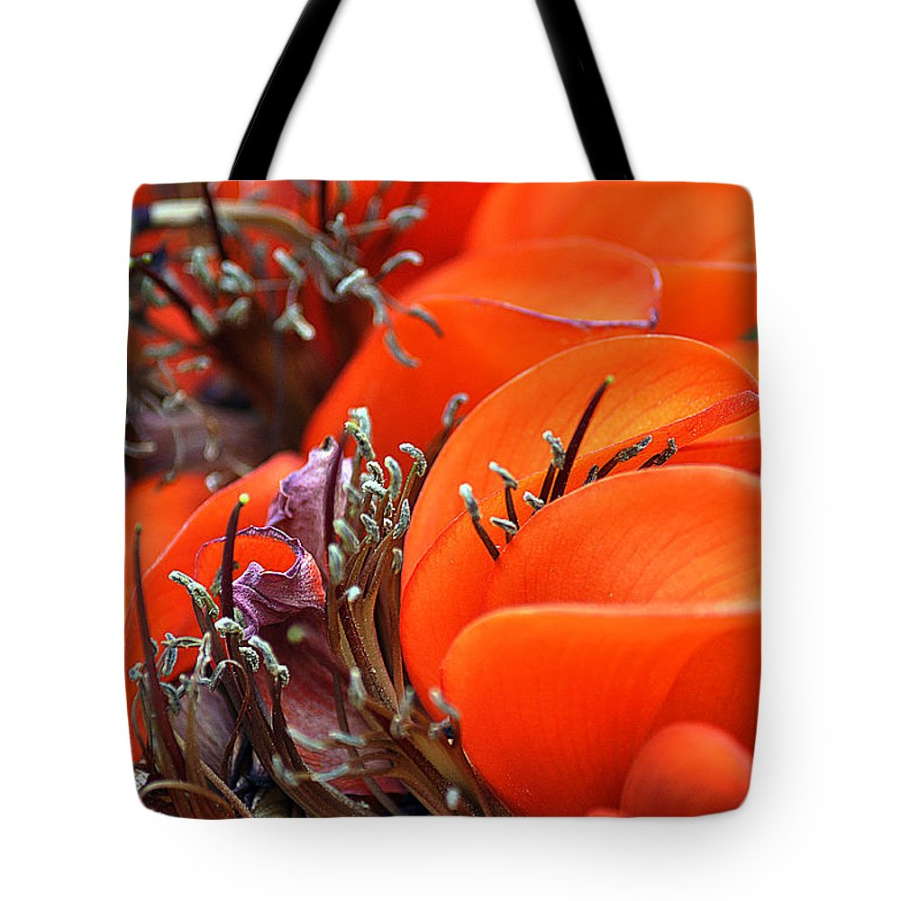 Clay Tote Bag featuring the photograph Orange by Clayton Bruster
