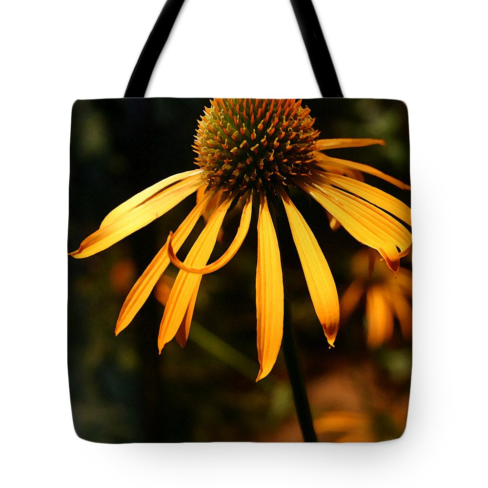 Flower Tote Bag featuring the photograph Orange Coneflower by Mary Haber