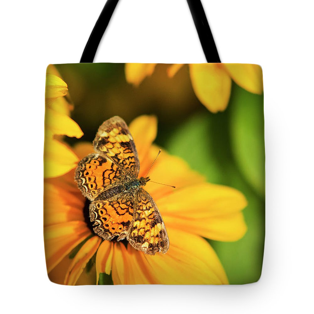 Pearl Crescent Butterfly Tote Bag featuring the photograph Orange Crescent Butterfly by Christina Rollo