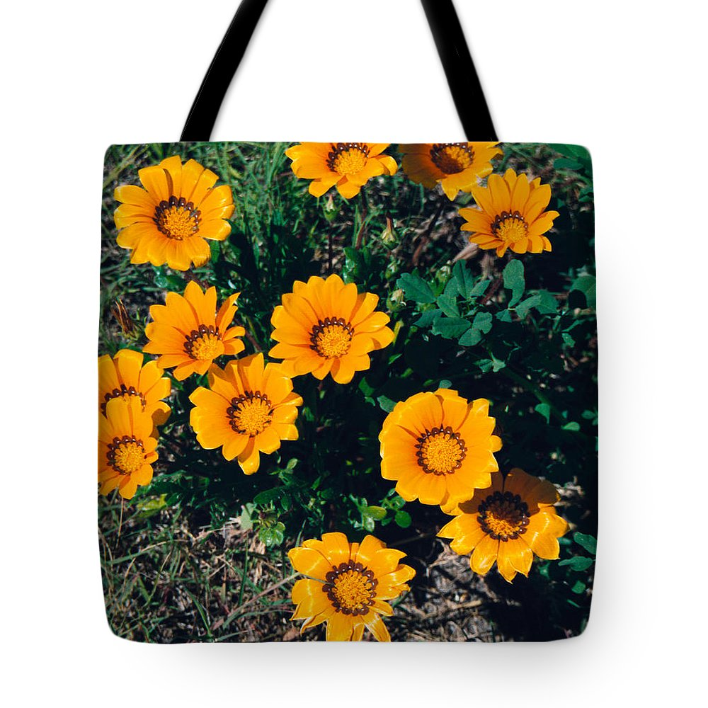 Film Tote Bag featuring the photograph Orange Daisies--film Image by Matthew Bamberg