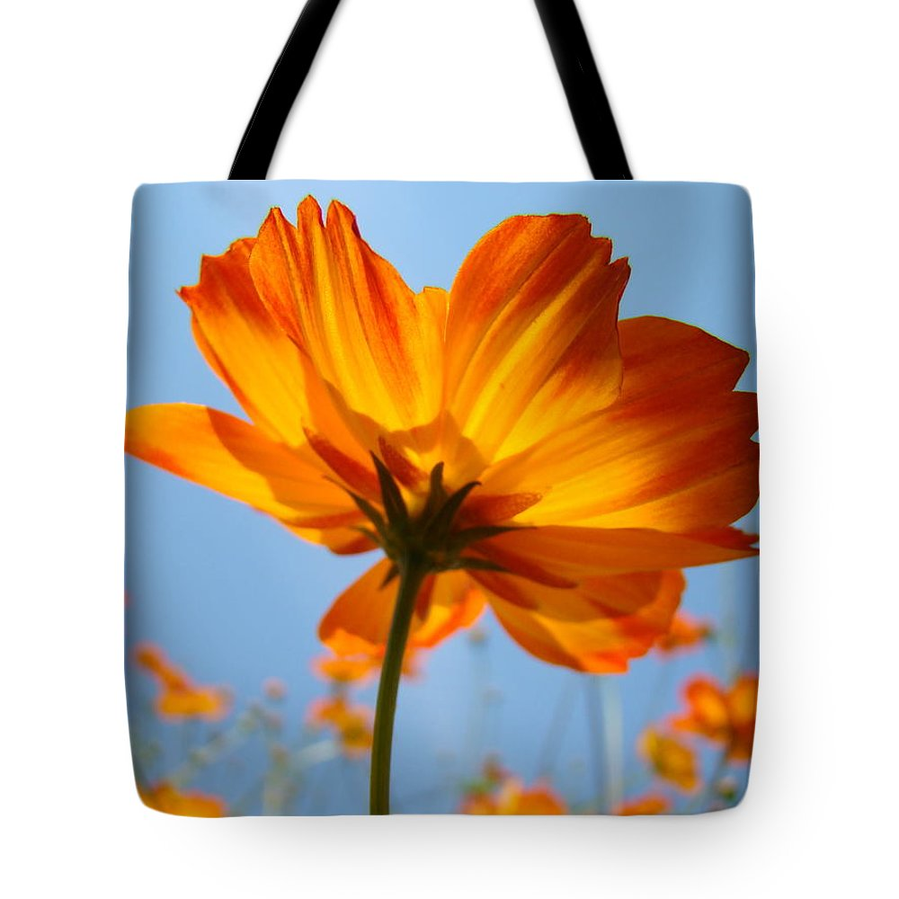 Daisy Tote Bag featuring the photograph Orange Floral Summer Flower Art Print Daisy Type Blue Sky Baslee Troutman by Baslee Troutman