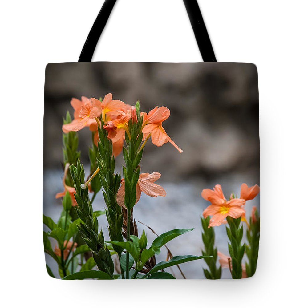 Flower Tote Bag featuring the photograph Orange Flower by Pamela Williams