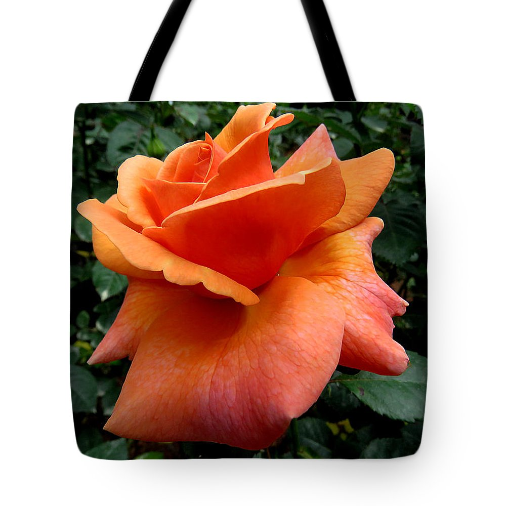 Rose Tote Bag featuring the photograph Orange Rose 1 by J M Farris Photography