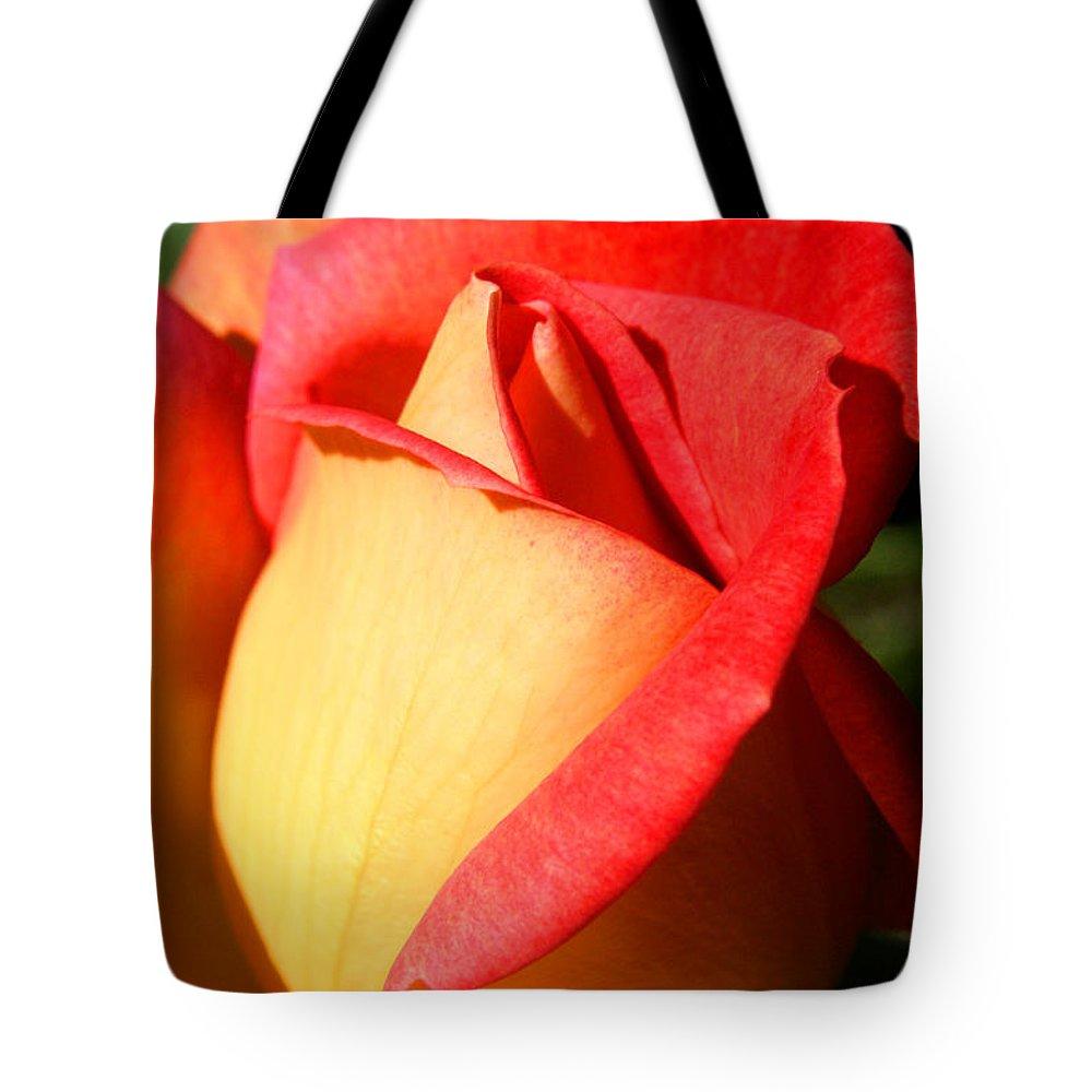 Orange Rosebud Tote Bag featuring the photograph Orange Rosebud by Ralph A Ledergerber-Photography
