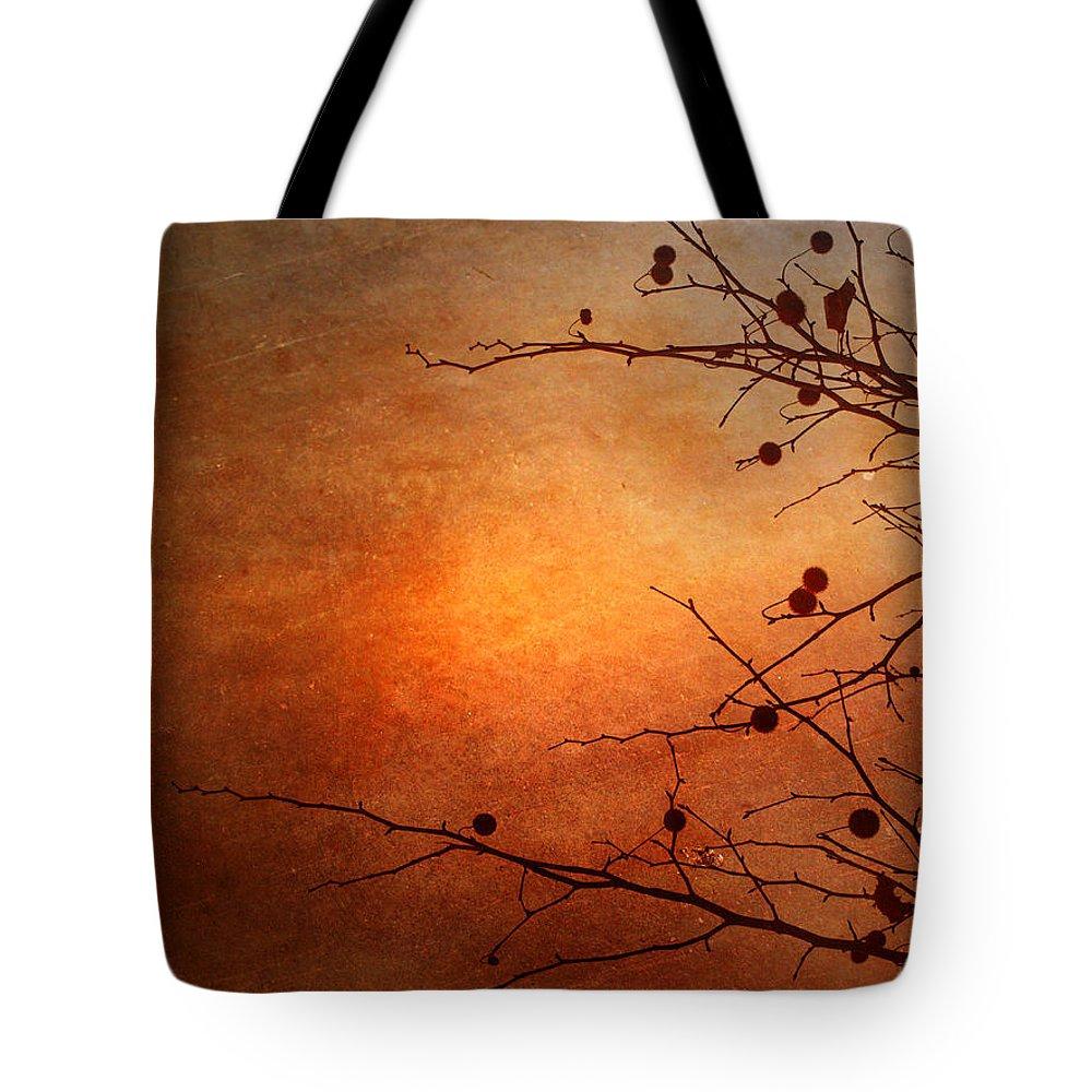 Orange Tote Bag featuring the photograph Orange Simplicity by Tara Turner