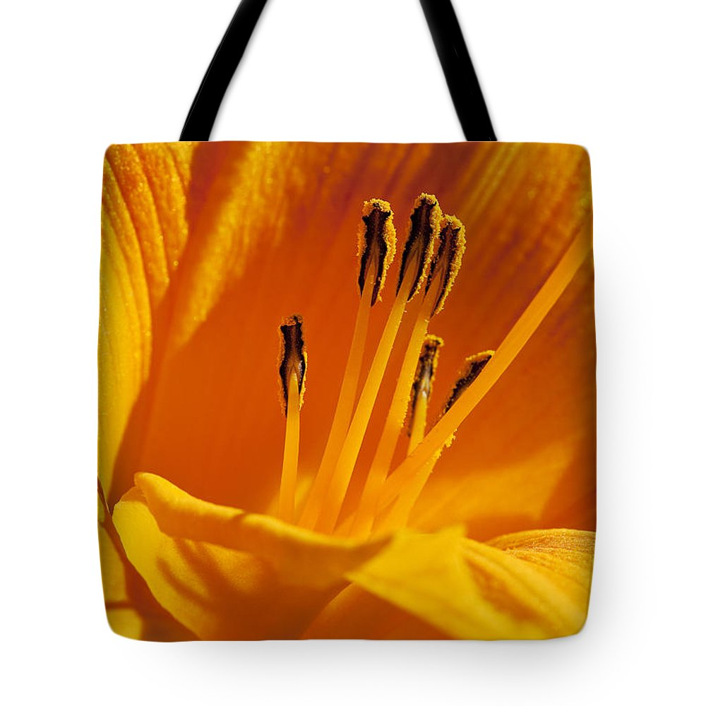 Flowers Tote Bag featuring the photograph Orange Stamens by Kelley King