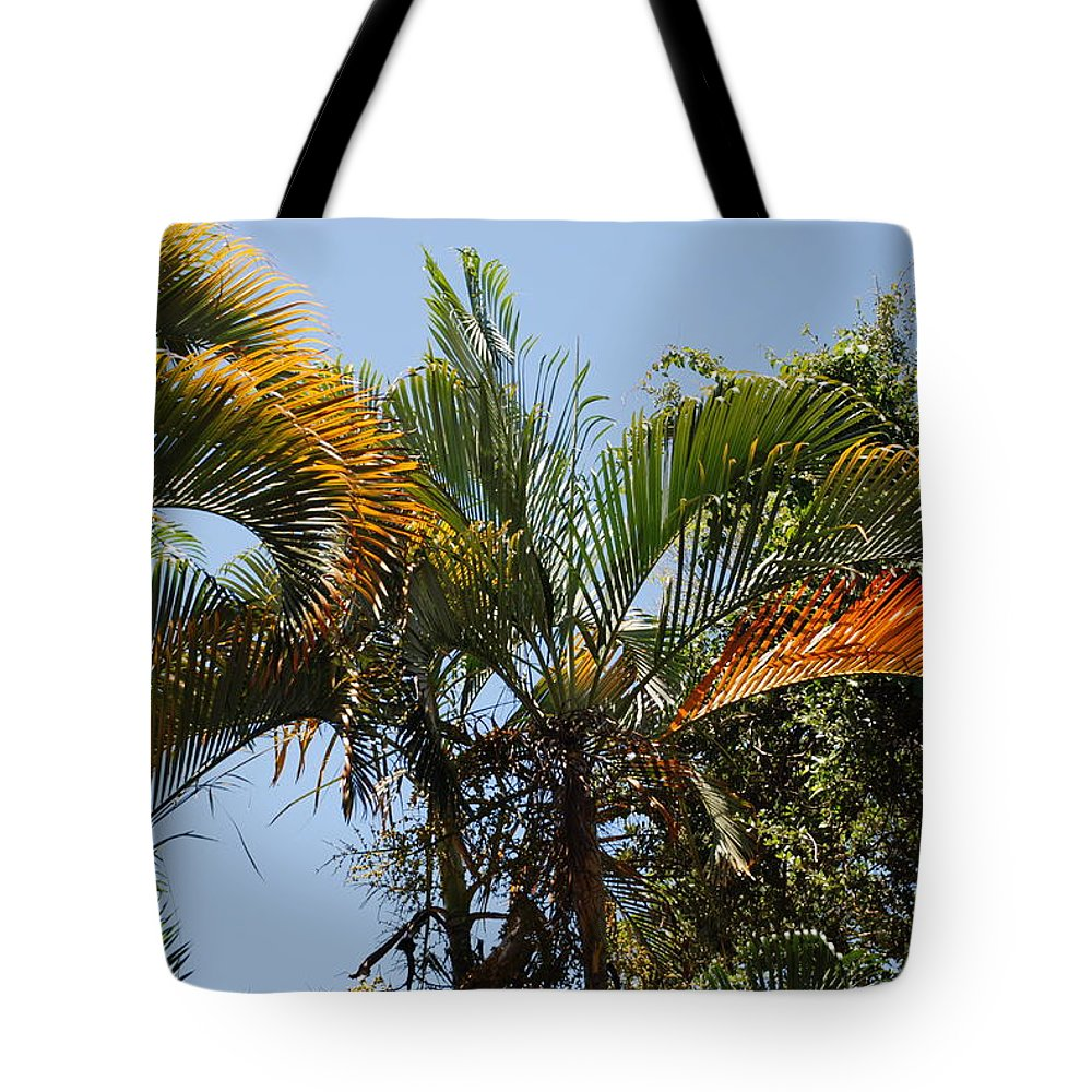 Palms Tote Bag featuring the photograph Orange Trees by Rob Hans