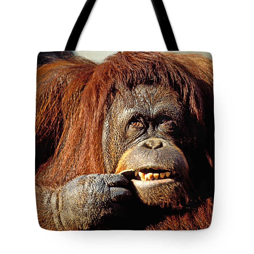 Animal Tote Bag featuring the photograph Orangutan by Garry Gay