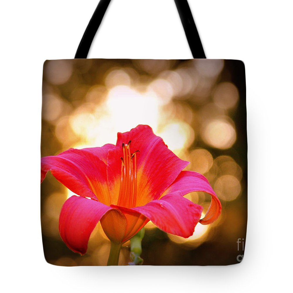 Flower Tote Bag featuring the photograph Orbs All Around by Lydia Holly