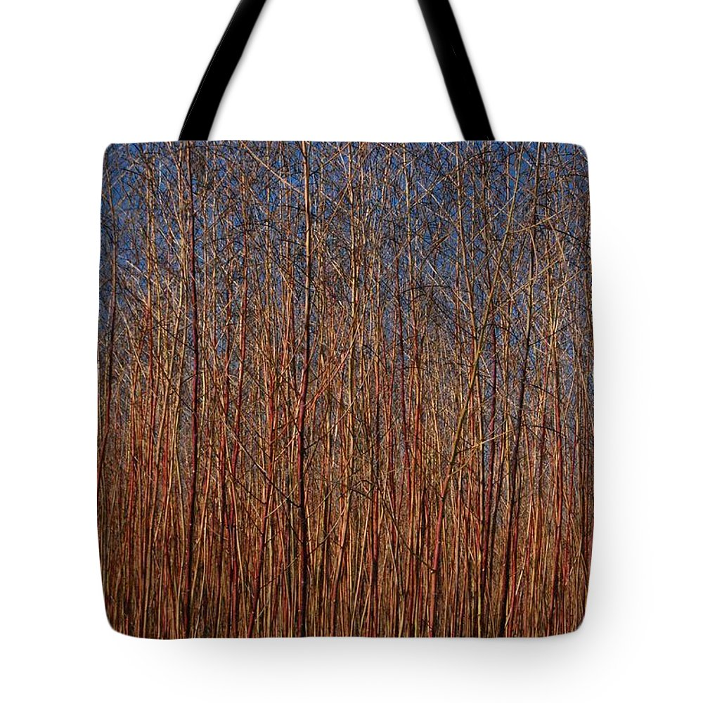 On The Farm Tote Bag featuring the photograph Orchard by Donna Bentley