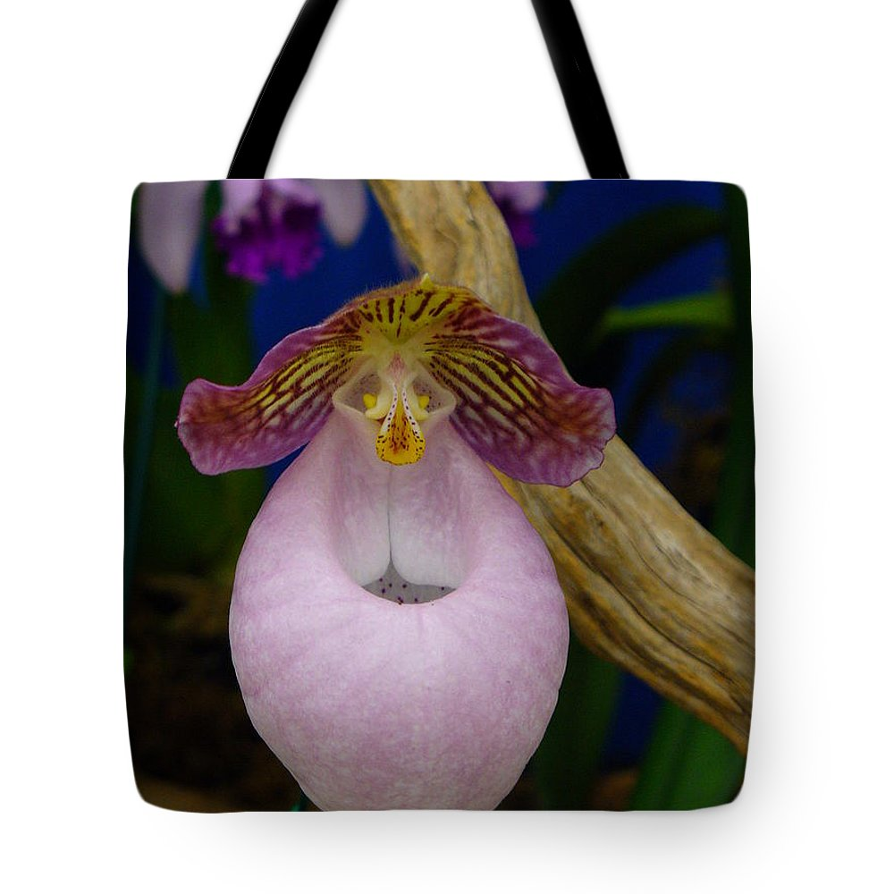 Orchid Tote Bag featuring the photograph Orchid 1 by Peggy King