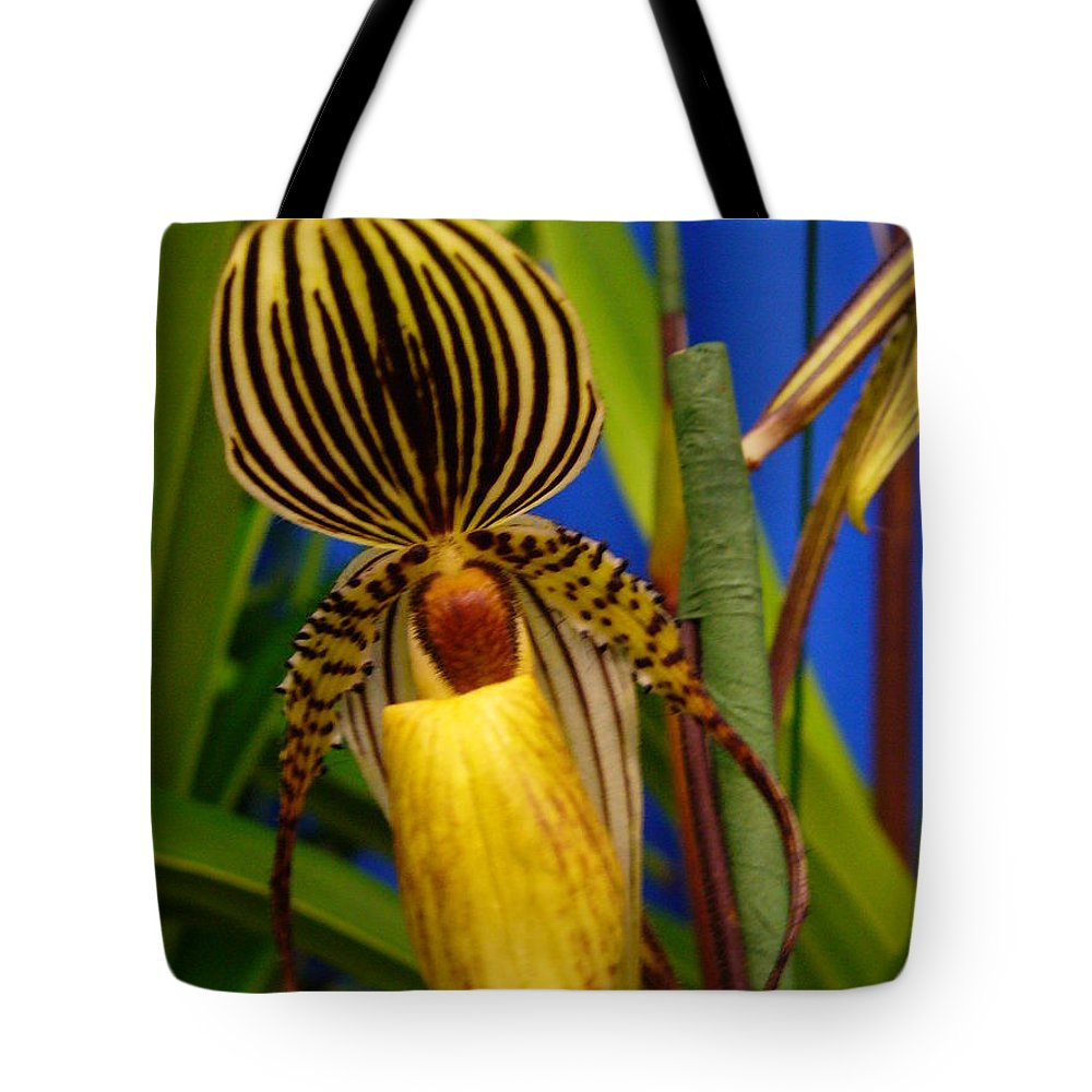 Orchids Tote Bag featuring the photograph Orchid 10 by Peggy King