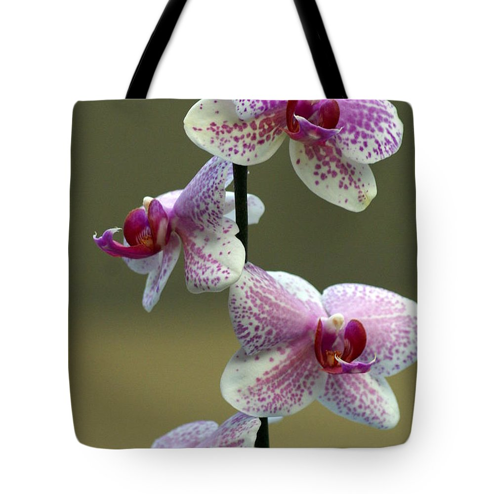 Flower Tote Bag featuring the photograph Orchid 16 by Marty Koch