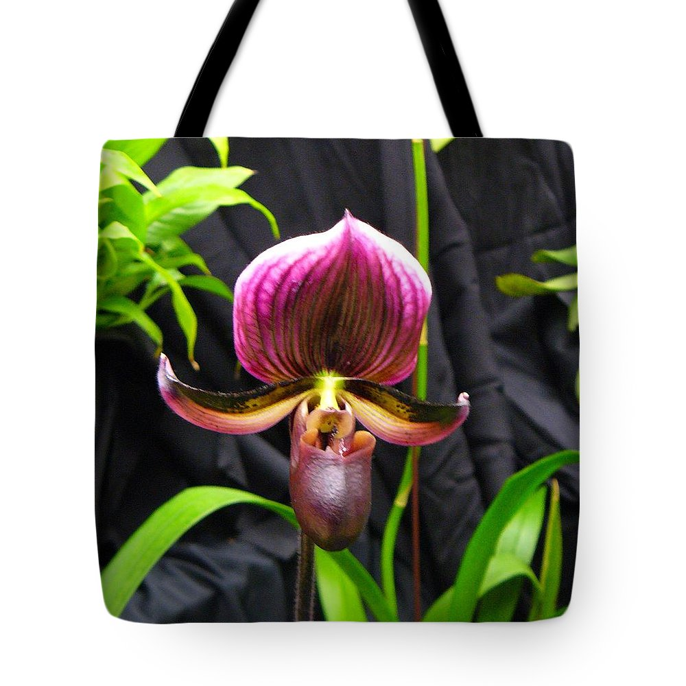 Orchid Tote Bag featuring the photograph Orchid 2 by Peggy King