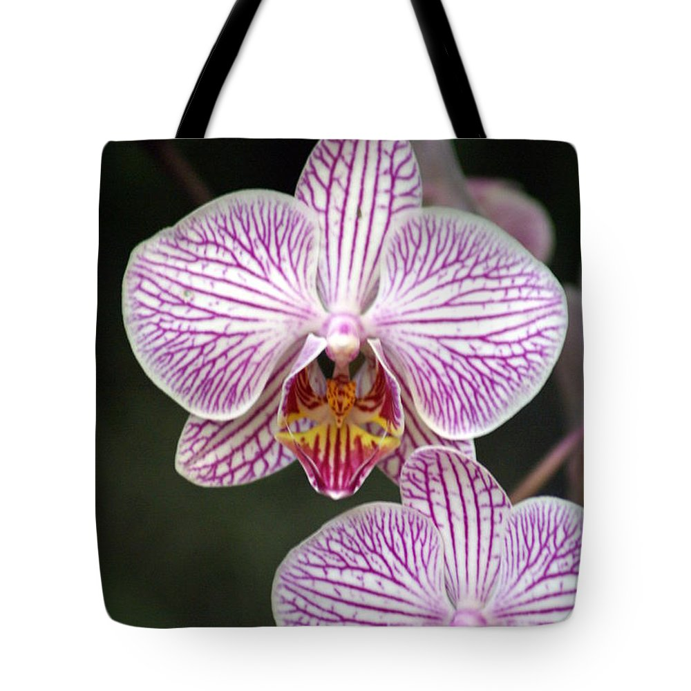 Flower Tote Bag featuring the photograph Orchid 22 by Marty Koch