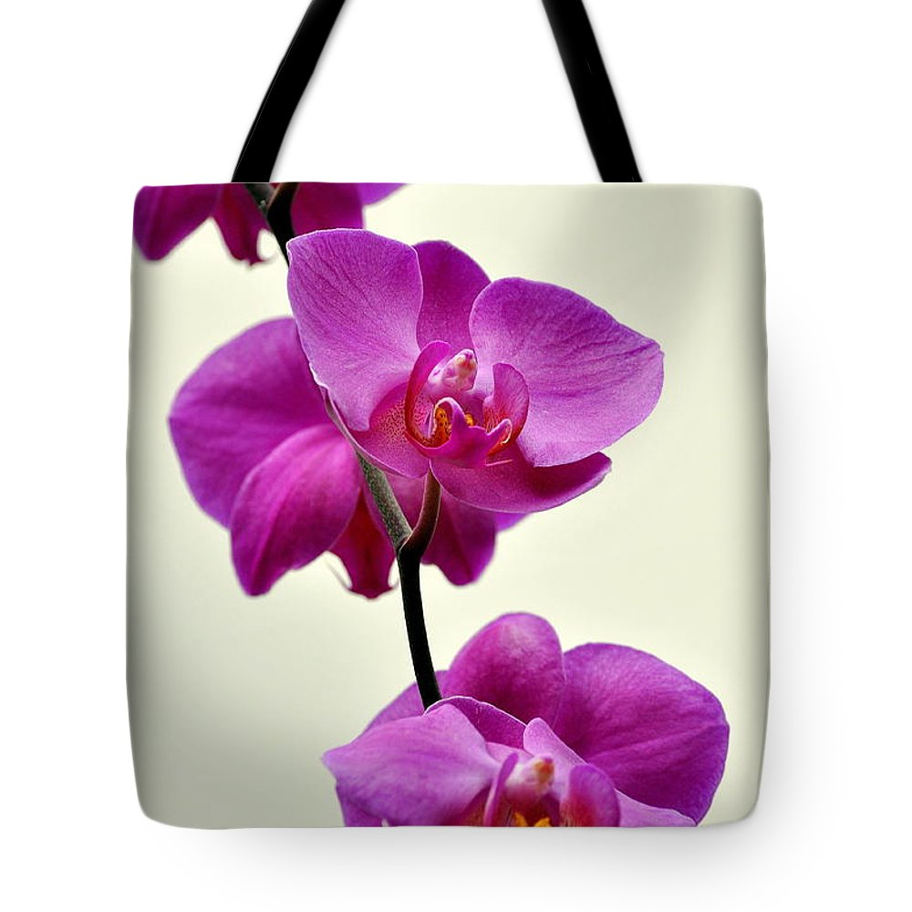 Orchid Tote Bag featuring the photograph Orchid 26 by Marty Koch