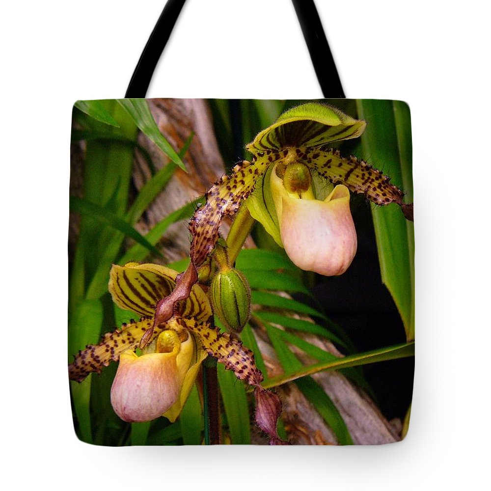 Orchid Tote Bag featuring the photograph Orchid 4 by Peggy King