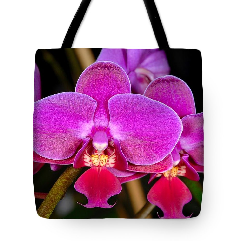 Orchid Tote Bag featuring the photograph Orchid 422 by Wesley Elsberry