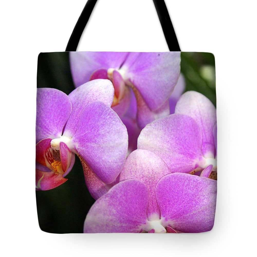 Flower Tote Bag featuring the photograph Orchid 5 by Marty Koch