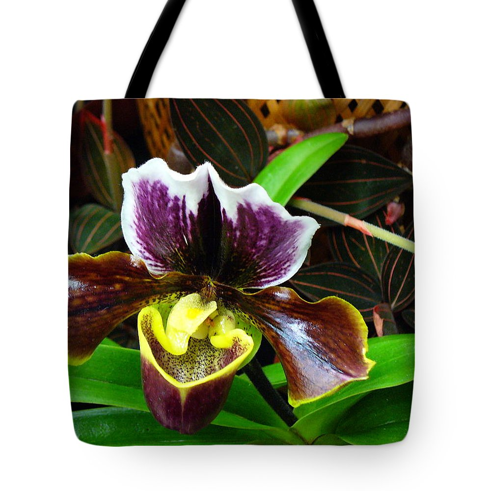Orchid Tote Bag featuring the photograph Orchid 5 by Peggy King
