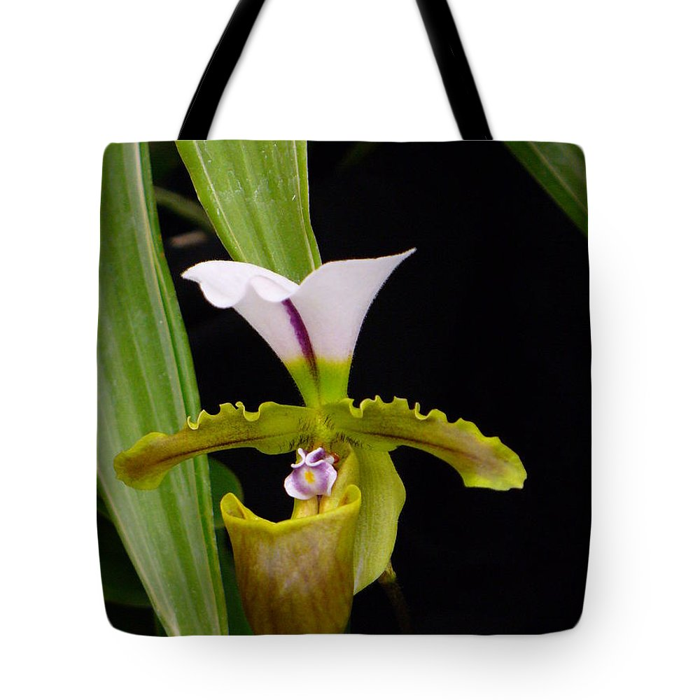 Orchid Tote Bag featuring the photograph Orchid 9 by Peggy King