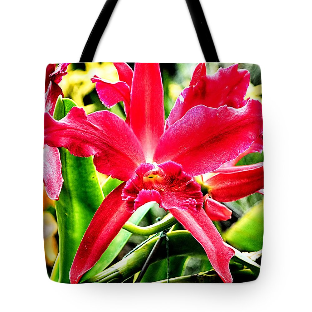 Orchid Tote Bag featuring the photograph Orchid Cattlianthe Hybrid by C H Apperson
