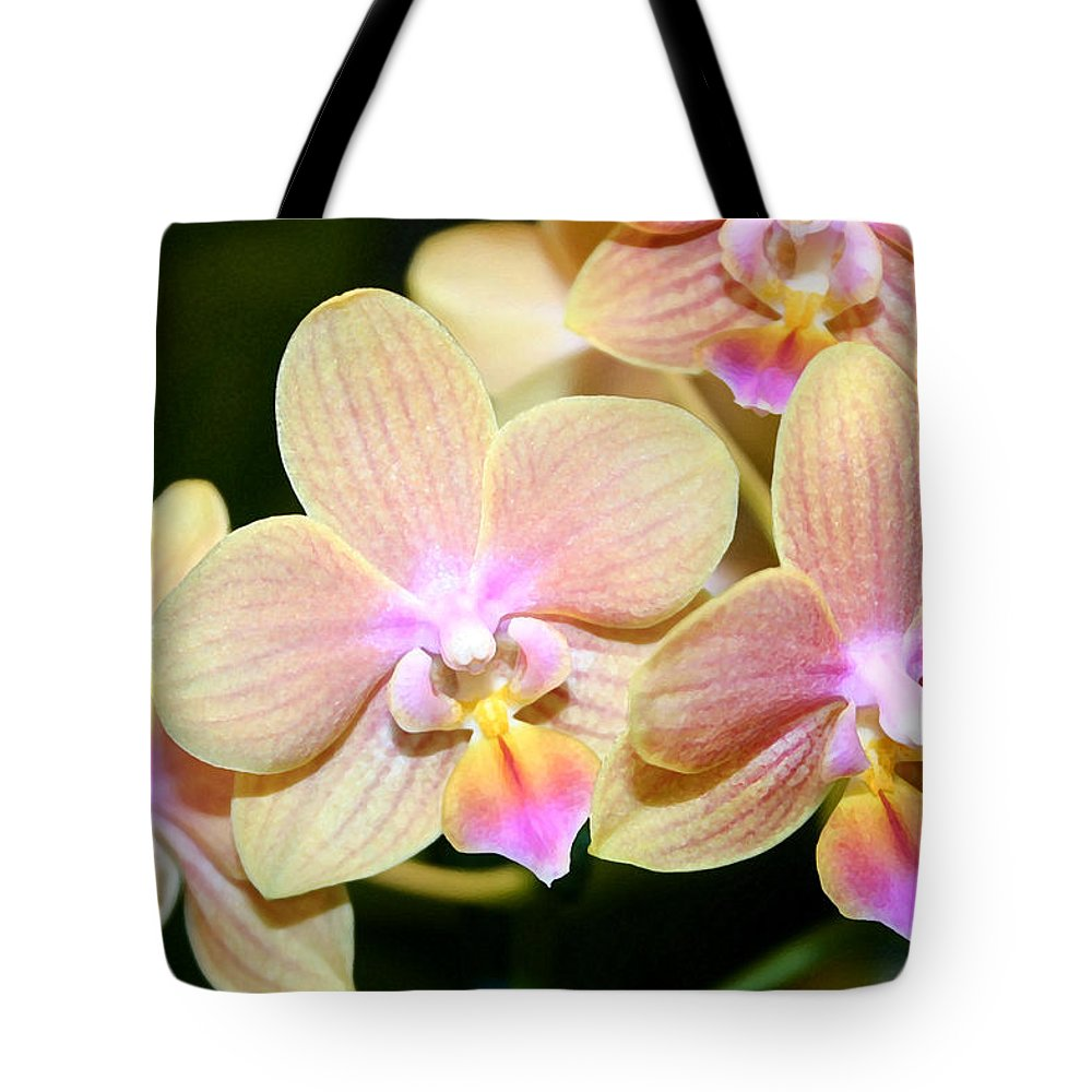Orchid Tote Bag featuring the photograph Orchid Group by Mary Haber
