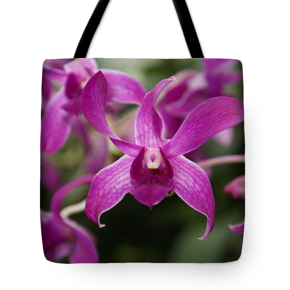 Orchid Tote Bag featuring the photograph Orchid by Heather Coen