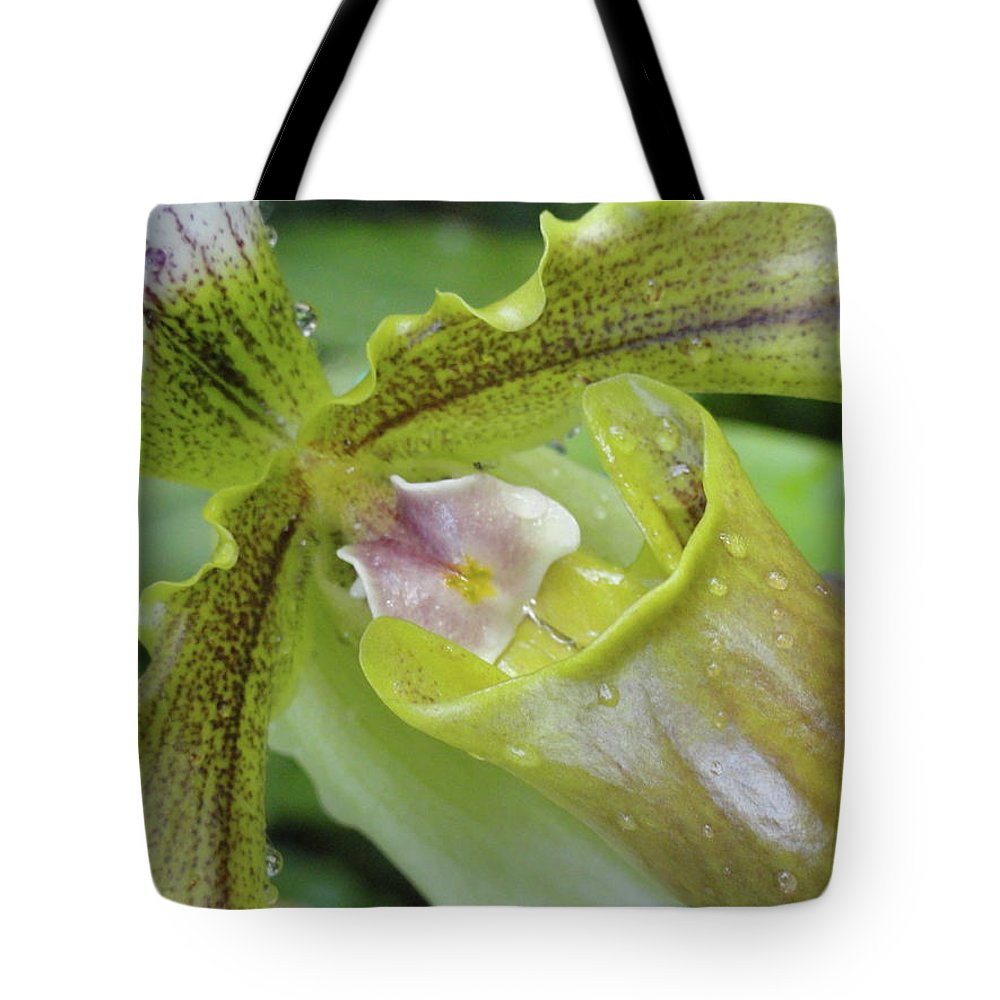 Orchid Tote Bag featuring the photograph Orchid Love by Trish Hale