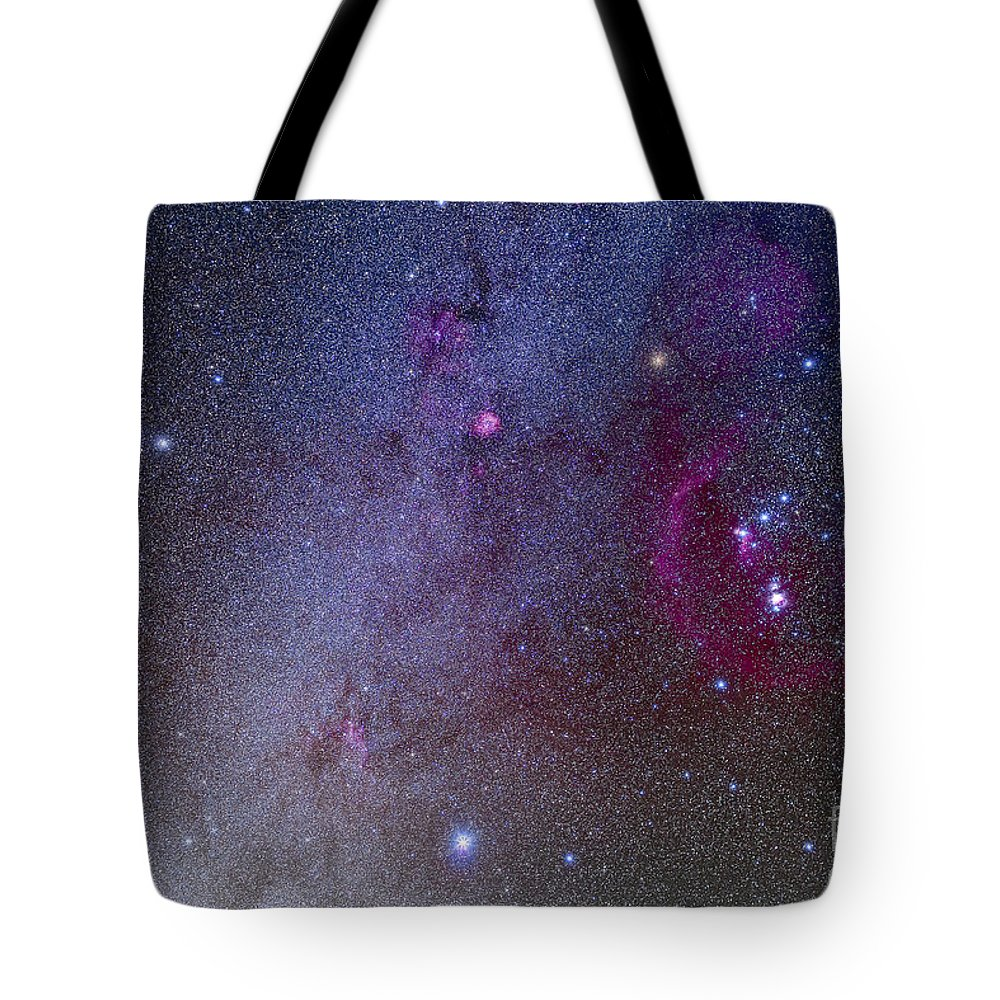 Belt Of Orion Tote Bag featuring the photograph Orion And Canis Major Showing Dog Stars by Alan Dyer