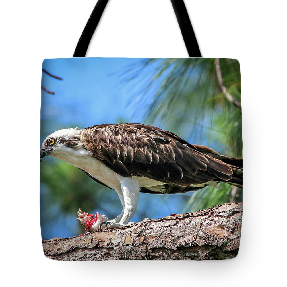Osprey Tote Bag featuring the photograph Osprey Breakfast Break by Tom Claud