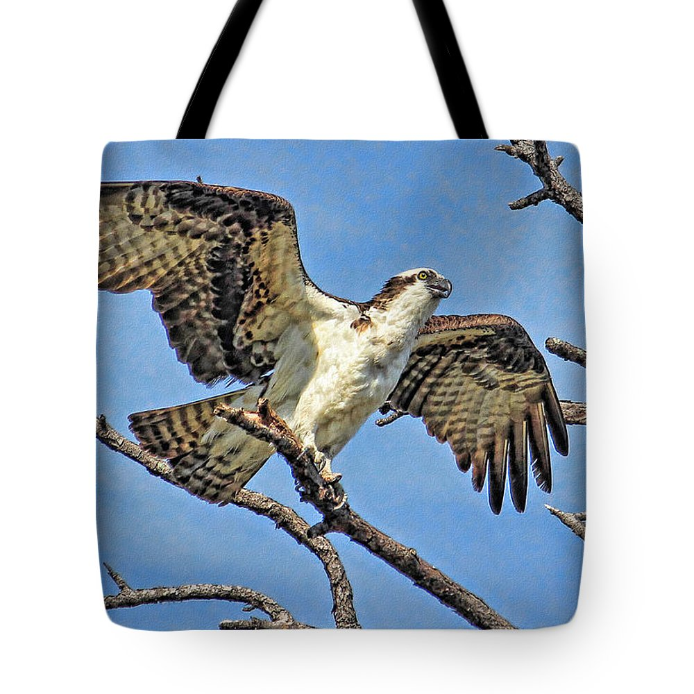 Hh Photography Of Florida Tote Bag featuring the photograph Osprey Wing Stretch by HH Photography of Florida